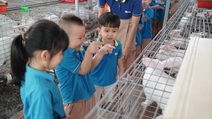 Chuyến tham quan trại thỏ
